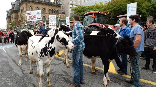 Oct 2015- Ottawa: Canadian farmers protesting aspects of the TPP trade deal in front of Parliament. In addition to other concerns about their livlihood threatened by the deal, They say the trade deal would allow US milk treated with hormones into the Canadian dairy supply system.