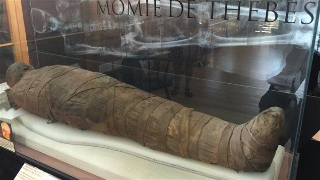 Momie de Thèbes au Musée Redpath de l'Université McGill