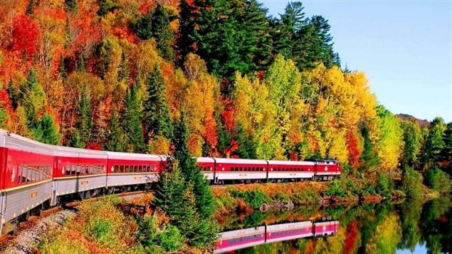The Agawa Canyon train is a wonderful experience to see the magnificent autumn colours of the northern Ontario forests