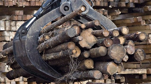 Billes de bois manipulées par de l'équipement lourd