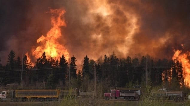 The Fort McMurray wildfire burned for weeks and consumed a vast area of the forest, burning through the town on its way and destroying many homes and businesses. But now a unique circumstance will result in a very rare brew of whisky