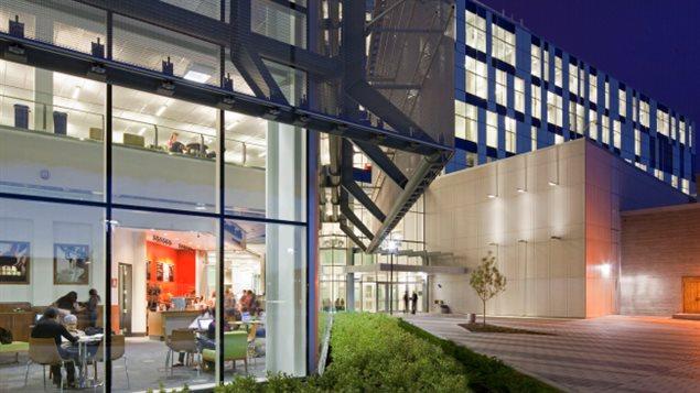Une bibliothèque avec beaucoup de fenêtres et un design modern
