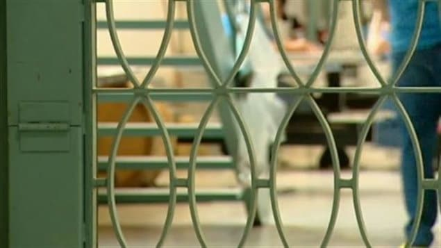 les barreaux d'une cellule de prison