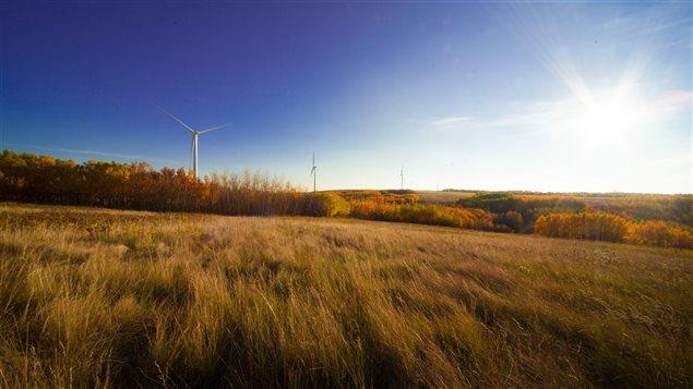 Le parc éolien Bull Creek, près de Wainwright en Alberta.