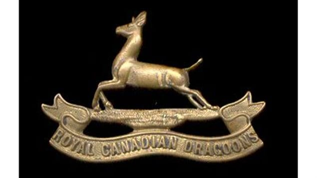 The springbok is the regimental symbol of the RCD