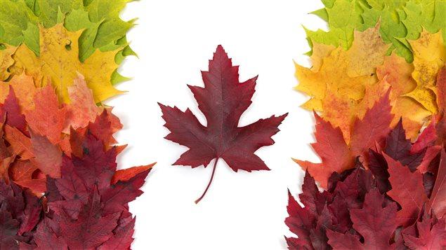 Représentation du drapeau du Canada