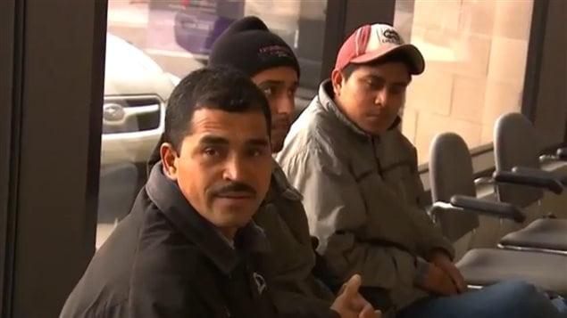 Tres de los 14 trabajadores temporales inmigrantes que podrían ser deportados por las autoridades canadienses. Ellos denunciaron a quienes consideran como responsables de haberlos engañado.