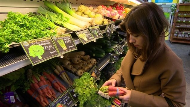 Fresh produce prices are expected to go up in Canada in 2017, just one of many food products that will see price hikes in the coming year, a new report says.