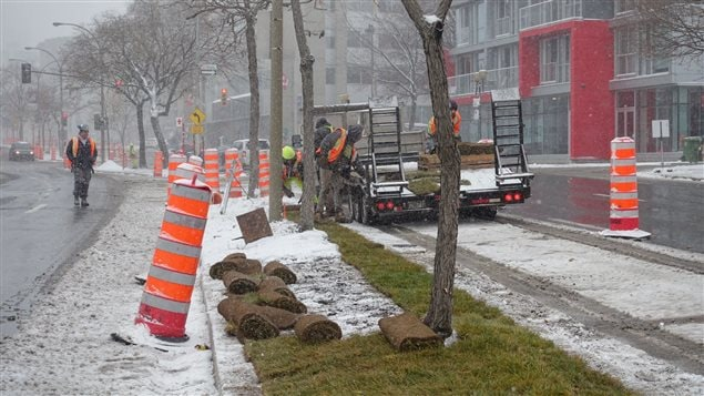 Installation de tourbe le 21 novembre à Montréal.
