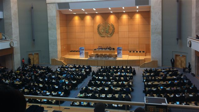 The coalition of NGOs presented the report last week to the United Nations in Geneva on the occasion of the 5th UN Annual Forum on Business and Human Rights.