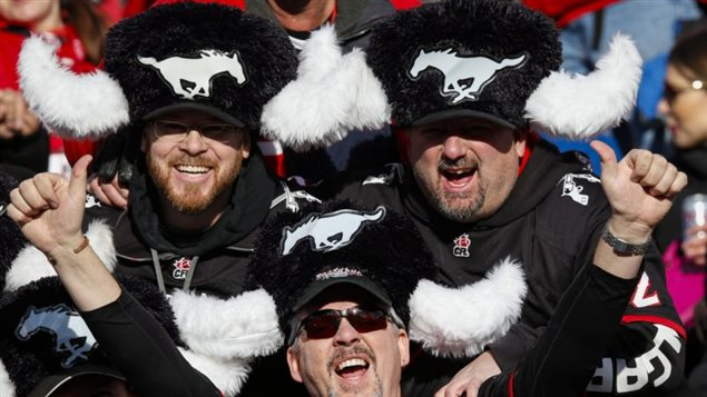 Wearing (warm) psuedo bison like hats with the Stampeders horse logo, hardcore fans are ready for the matchup.