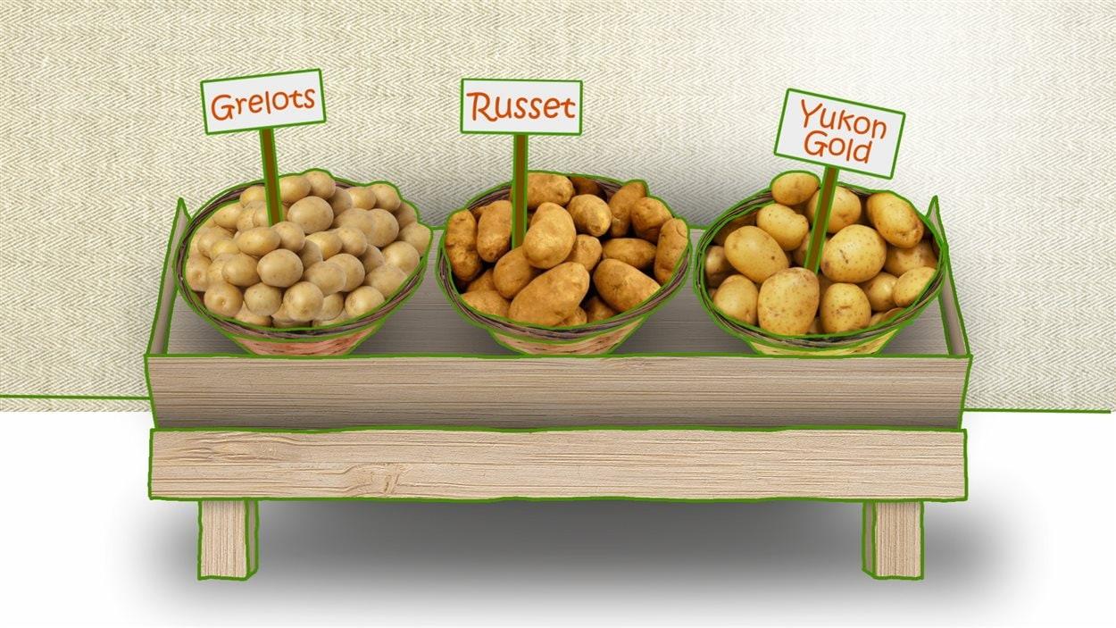 Les variétés de pommes de terre