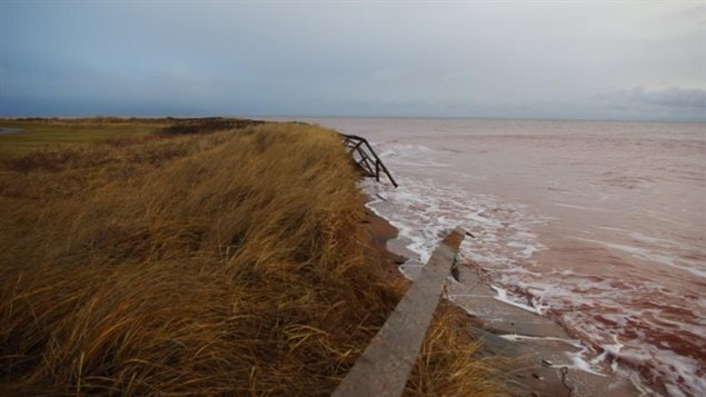 Recent storms damaged the boardwalk at Cedar Dunes Provincial Park by the lighthouse, The boardwalk used to be  several metres from the shore.