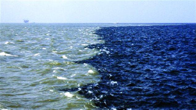 Zone morte océanique