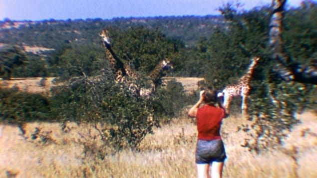 Anne Innis Daag overcame stubborn obstacles to become the first person to study giraffes and other wild animals in Africa.