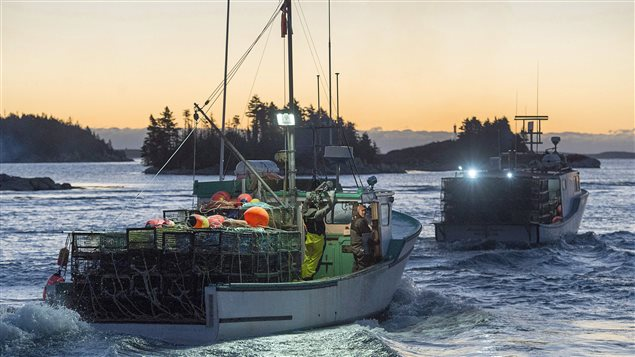 On Nov. 29, 2016, boats headed out from West Dover in the eastern province of Nova Scotia to kick off the lucrative lobster fishing season.