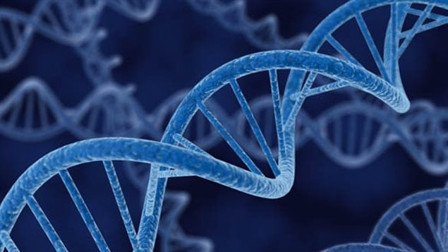 DNA is now being used to create a registry of all species on earth. This will help identify and track species and aid in their preservation. The Canadian idea and technology has been adopted by the UN.