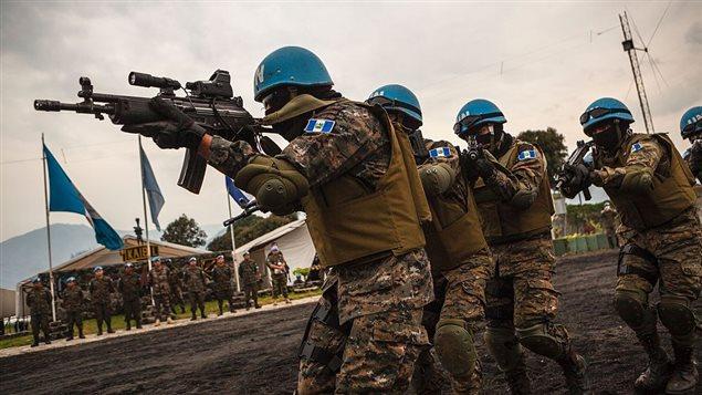 Mission de l'Organisation des Nations unies pour la stabilisation en République démocratique du Congo