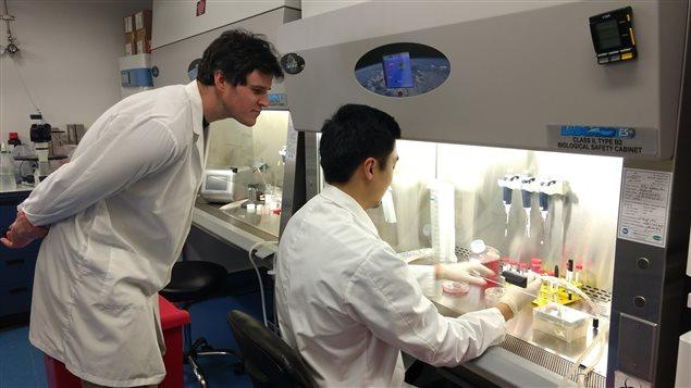 rci-labo-maladies