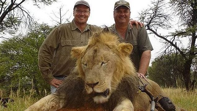 Walter Palmer (left) a dentist from Minnesota and the highly controversial killing of Cecil the lion.