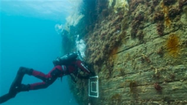 Marc-André Bernier, Parks Canada's manager of underwater archelogy, sets a marine biology sampling quadrat on the port side hull of HMS Erebus.