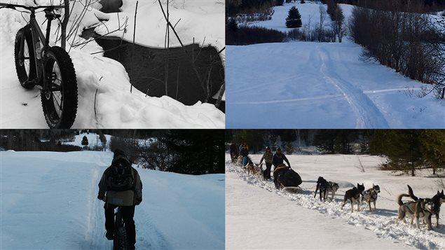 Traîneaux à chiens en Outaouais