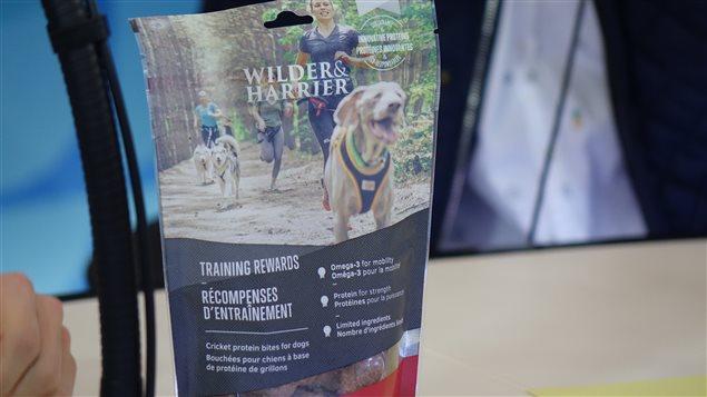 De la nourriture pour chiens à base de farine de grillons de Wilder
