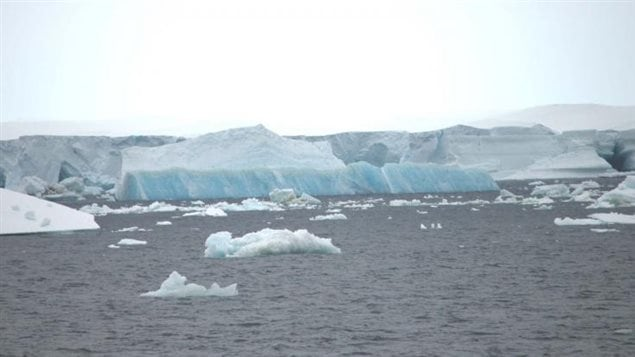 Ice Trek 2006: Icebergs breaking off from a large ice sheet in the Antarctic summer. Overall ice loss from both poles has reached a record this year, for the lowest global sea ice extent ever recorded