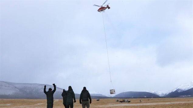 The containers were then moved by helicopter to the remote enclosure.
