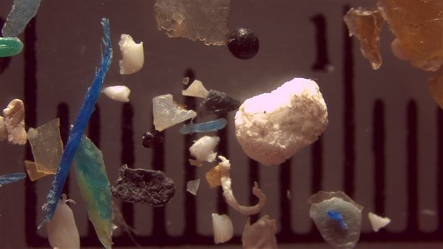 A variety of microplastic bits. taken from waterways in a sampling.