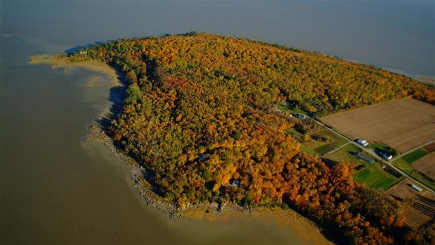 Lands in the St. Lawrence River include rich ecosystems that are home to vulnerable and unique species.