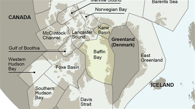Polar bear subpopulations, with Kane Basin and Baffin Bay highlighted.
