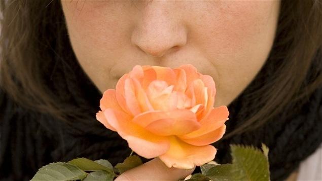Une jeune fille sent une fleur