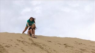 Les Great Sand Hills : une mer de sable dépaysante au cœur des Prairies