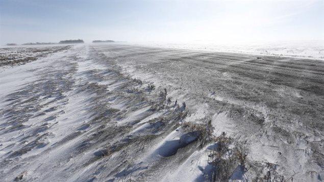 Depuis le début de l'année, près de 300 personnes ont traversé la frontière entre les États-Unis et le Canada, par la petite municipalité frontalière d'Emerson, au Manitoba.LA PRESSE CANADIENNE, JOHN WOODS
