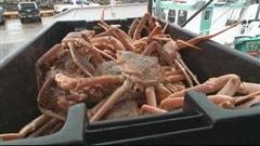 Bac de crabes