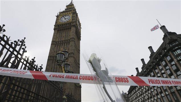 Une rose blanche a été déposée près du parlement britannique à Londres où a eu lieu hier (23 mars 2017), une attaque terroriste.