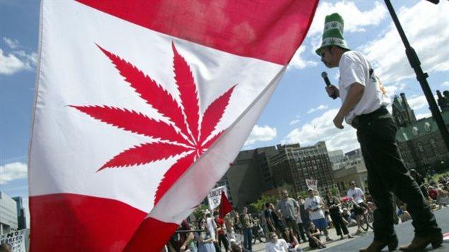 CBC News a appris que le gouvernement fédéral annoncera la semaine du 10 avril que la nouvelle loi rendra la vente de la marijuana licite d'ici le 1er juillet 2018. (Mark Blinch / Canadian Press)