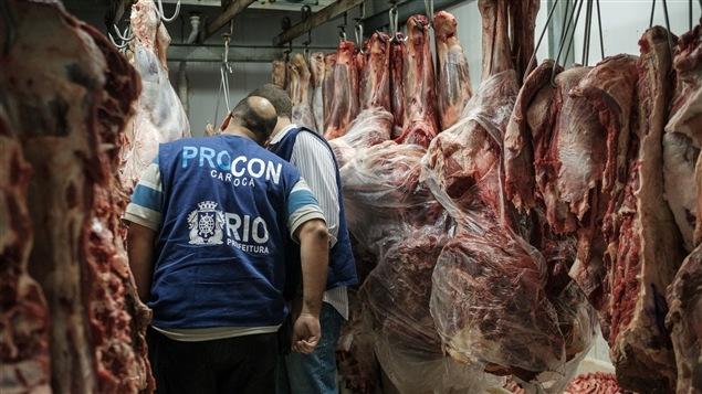 Des inspecteurs brésiliens examinent des carcasses de viande dans la foulée du scandale de viande avariée qui a éclaté le 17 mars.