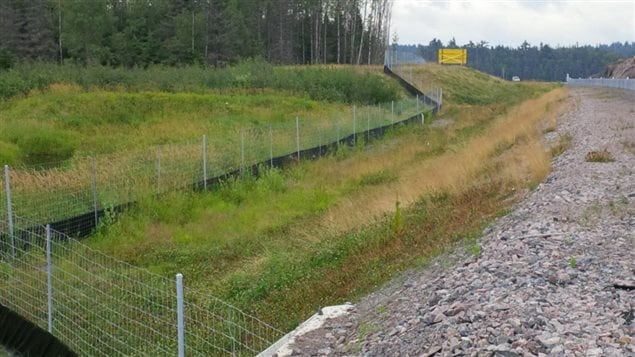 Fences and other deterrents are used in many places in Canada to prevent animals from crossing some roads and being hit by vehicles.
