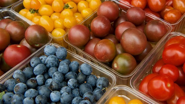 ارتفعت أسعار الفواكه الطازجة بنسبة 5,6% في فترة الـ12 شهراً المنتهية الشهر الفائت