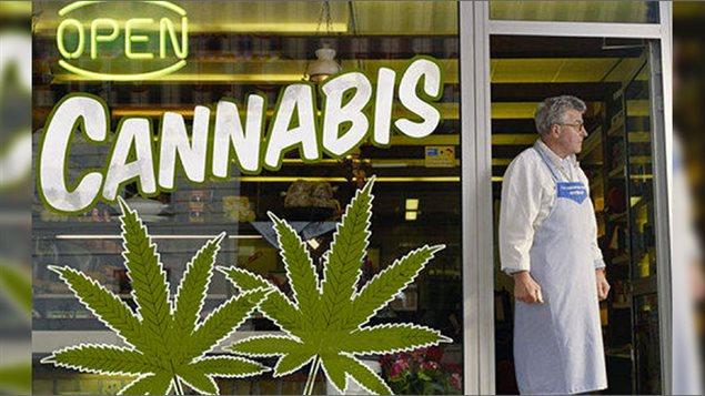 Le marché légal de la marijuana du Colorado a augmenté ses ventes de plus de 42% en 2015 par rapport à 2014, ce qui représente près d'un milliard de dollars de profit pour le gouvernement de cet état américain.