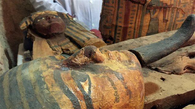 En Égypte, une équipe d'archéologues a mis au jour une tombe vieille de près de 3500 ans qui contenait huit momies.