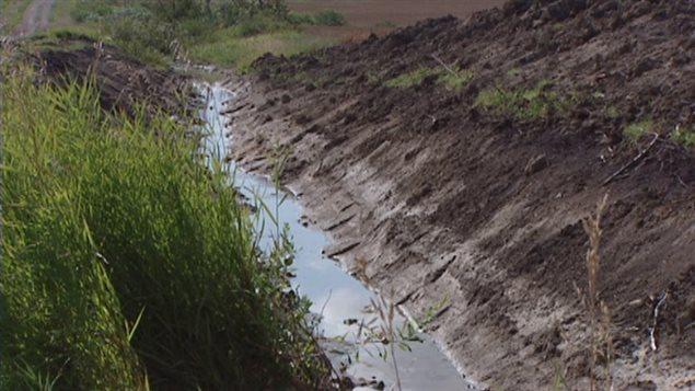 Une rigole de drainage dans un champ agricole.