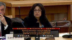 Sujata Dey speaking at a Senate trade committee this week asking Senators not to rush approval of the CETA deal. *Many Canadians and Europeans are concerned that CETA is based on a blueprint for trade which gives incredible rights to corporations: protections on investments, patents, public services, regulatory harmonization, with nothing for the environment and for other stakeholders.*