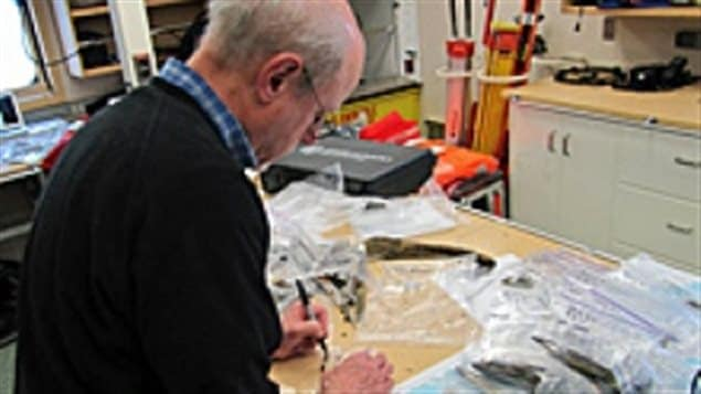 Doug Stenton catalogues artifacts found on King William Island in the lab on the Canadian Coast Guard icebreaker Sir Wilfrid Laurier in 2013.