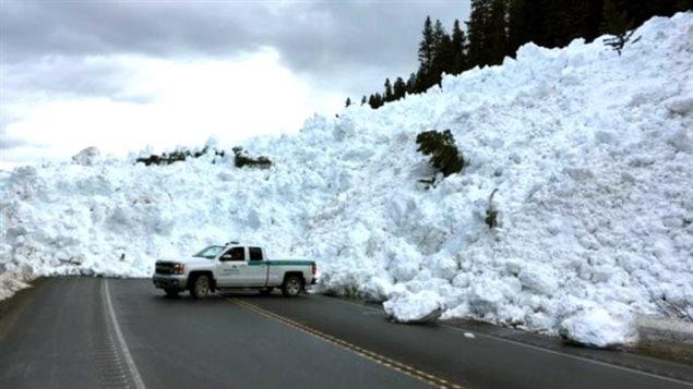 Une avalanche contrôlée sur le Icefields Parkway le long de l'autoroute transcanadienne dans le parc national de Banff dans l'ouest du pays.