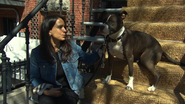 Dog owner Tanya Das Neves says Quebec should have put more funding into enforcing current animal regulations instead of creating new ones. Certain breeds could be banned entirely in the province while other large dogs would face new restrictions under the proposed legislation.