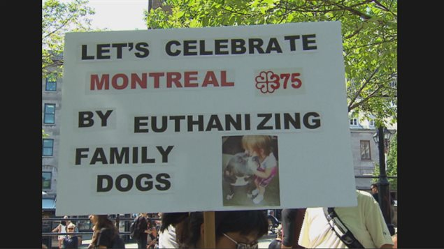 Last September groups protested the city of Montreal's ban on pit bulls and similar dogs. A protest will be held this Saturday against a similar province-wide law now being discussed