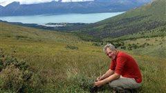 Professor David Hik, conducting research in the Yukon, Kluane Lake.